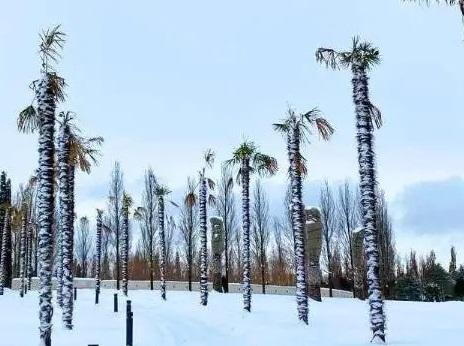 Резкие колебания климата ожидаются в мире